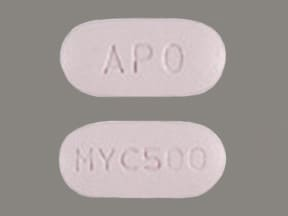 Image for mycophenolate mofetil oral 500 mg