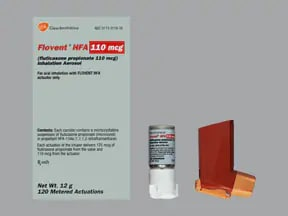 FLOVENT HFA 110 MCG INHALER